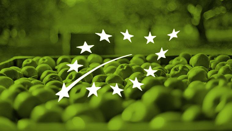 tecoal_consultoria_tecoal_consultoria_Normas-de-Calidad_Normas de certificación de productos ecológicos
